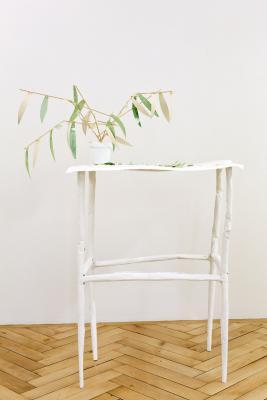 Michael Noser - Galerie Susanna Kulli - Jardin des Plantes - 2014 - 5/6