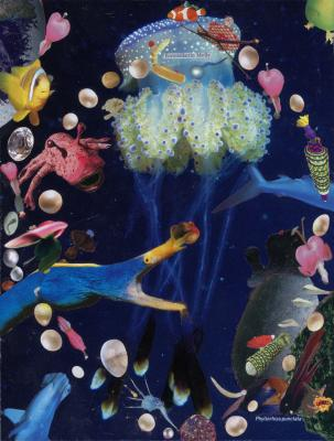 Peter Z. Herzog - Galerie Susanna Kulli - Display books and lambda prints - 2015 - 4/4