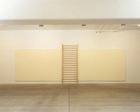 John Armleder_Galerie Susanna Kulli_1990