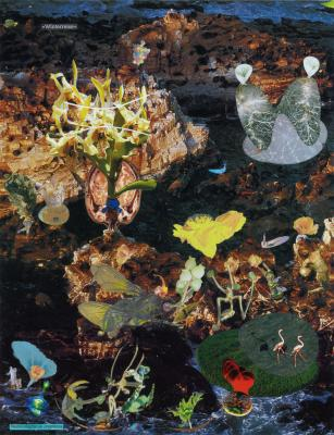 Peter Z. Herzog - Galerie Susanna Kulli - Display books and lambda prints - 2015 - 1/4
