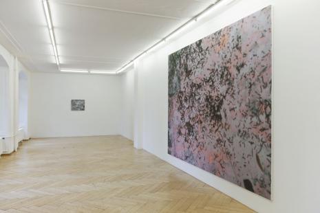 Adrian Schiess_Galerie Susanna Kulli_Zurich