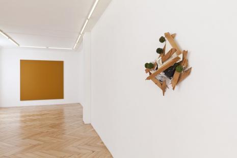 Thom Merrick - Olivier Mosset - Galerie Susanna Kulli - 2012 - installation view - 1/2