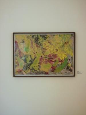 Adrian Schiess - Galerie Susanna Kulli - exploring painting - 2012 - 1/3